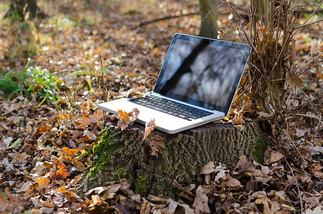Remote Working Pros and Cons